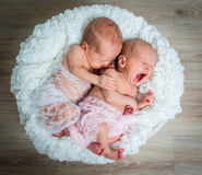 Newborn twins l sleeping in a basket Stock Photo