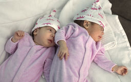 The newborn twins royalty free stock photos