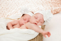 Newborn twins sisters sleeping in basket and hugging each other Royalty Free Stock Images