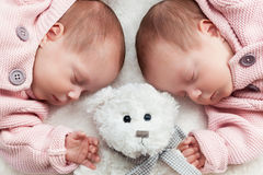Newborn twins sisters sleeping with a teddy bear in the middle. Stock Images