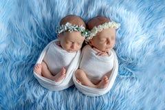 Newborn twins sleep on a blue background, the dream of newborn twins