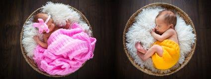 Newborn twins. Sleeping inside the wicker baskets Stock Image