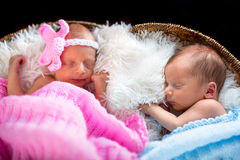 Newborn twins Stock Photo