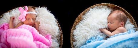 Newborn twins Stock Photo