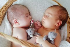Newborn twins are sleeping Royalty Free Stock Images