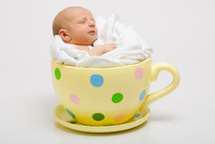 Newborn in a yellow spotted cup Royalty Free Stock Photography