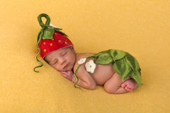 Newbornbaby with strawberry hat. One week old newborn baby of mixed race sleeping on a soft yellow blanket royalty free stock photography