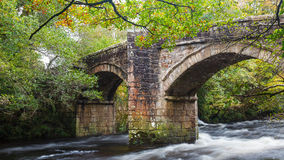Newbridge Dartmoor Devon. Historic bridge of the River Dart at Newbridge Dartmoor National Park Devon England UK Europe Stock Photos