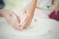 Newbron Baby feet in the mother hands. Royalty Free Stock Photo