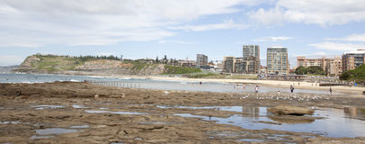 Newcastle beach Royalty Free Stock Image