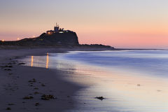 Newcastle beach pink close Royalty Free Stock Images