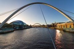Newcastle Gateshead kaj - vis man, millenium och Tyne Bridges I arkivbild