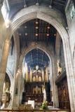 Newcastle katedra, Katedralny kościół St Nicholas organów b Zdjęcie Stock