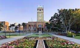 Newcastle urzędu miasta kwiaty Zdjęcia Stock