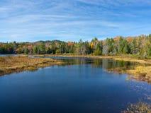 Newcomb en Autumn Splendor temprano Imagenes de archivo