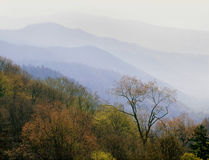 Newfound Gap at dawn, Great Smoky Mountains National Park, Tennessee royalty free stock image