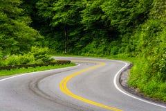 Newfound Gap droga przy Great Smoky Mountains parkiem narodowym, Tennes Obrazy Stock