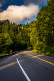 Newfound Gap Road, in Great Smoky Mountains National Park, Tenne Royalty Free Stock Photos