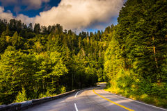 Newfound Gap Road, in Great Smoky Mountains National Park, Tenne Stock Photography