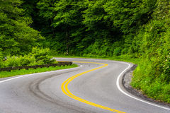Newfound Gap Road at Great Smoky Mountains National Park, Tennes Stock Images