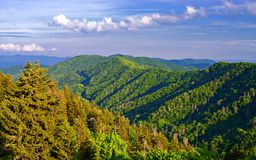 Newfound Gap Royalty Free Stock Photos