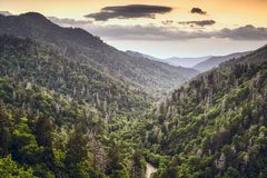 Newfound Gap Royalty Free Stock Image