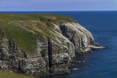 Cape St. Mary`s Ecological Reserve, Newfoundland