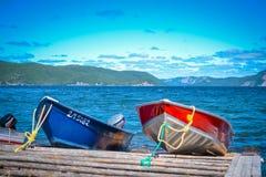 NEWFOUNDLAND/CANADA - AUGUSTUS 2014: DE ZOMER IN NEWFOUNDLAND royalty-vrije stock fotografie