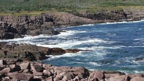 NewFoundland Canada. View of nature in NewFoundland Canada stock video