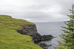 Newfoundland coast by Trinity Bay. Atlantic Ocean coast in Trinity Bay, Newfoundland, Canada royalty free stock photography