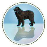 Newfoundland dog. Emblem of pets vector illustration