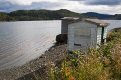 Newfoundland fishing shacks. Scenic view of traditional fishing shacks on Coffee cove settlement, Newfoundland and Labrador, Canada Royalty Free Stock Photography