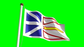 Newfoundland flag stock video footage