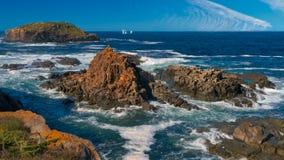 Newfoundland kustlinje som sett från Elliston arkivfoto