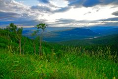 Newfoundland Mountains on a Summer Evening, Western Newfoundland, Canada. Stunning Evening Forest and Mountain Landscape along The Viking Trail near Wiltondale royalty free stock images