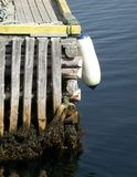 Newfoundland Pier. Fender hanging from weathered pier in Newfoundland Stock Photography