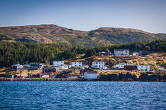 Newfoundland Shoreline Royaltyfria Bilder