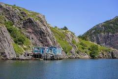 Newfoundland Shoreline Royalty Free Stock Images