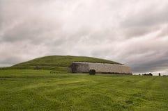 Newgrange Royaltyfri Fotografi