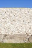 Newgrange in Irlanda Fotografie Stock