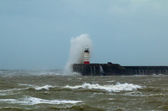 Newhaven Lighthouse and Spray Royalty Free Stock Photo