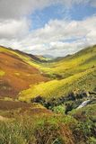 Newlands Hause, Lake district Stock Photos