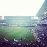 Newlands rugby stadium Zdjęcie Royalty Free