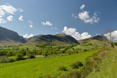 Free Newlands Valley Royalty Free Stock Images - 98614149