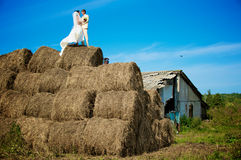 Newlweds on the haystack Royalty Free Stock Images
