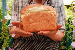 Newly-baked bread. In grandmother's hands royalty free stock photo