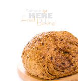 Newly baked bread Stock Images
