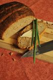 Newly-baked rural bread. Homemade brown bread with butter and onion Royalty Free Stock Photos