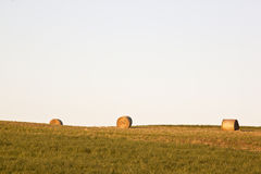 Newly baled hay at German fields. Bales of hay at a mowed field in the evening sun in the village of Dasing in Bavaria in the south of Germany royalty free stock photos