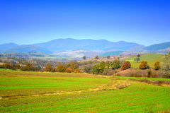 Newly crops autumn landscape Royalty Free Stock Photo